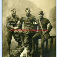 WWI Doughboys w/ Mascot Dogs - A Photo Study