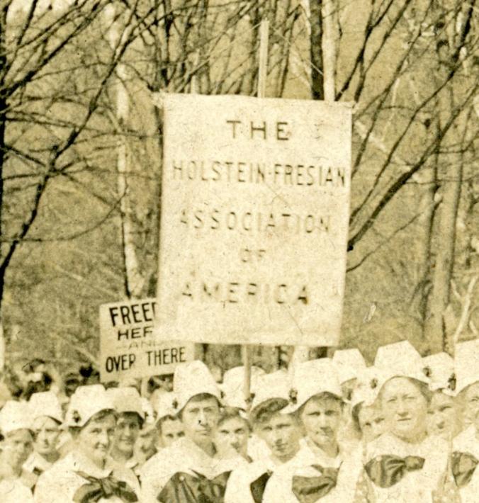 Holstein-Friesian Banner