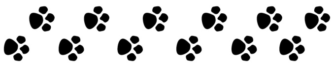 paw-print-trail-clipart-kid