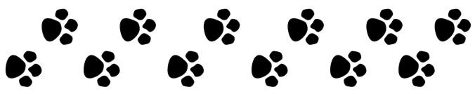 paw-print-trail-clipart-kid